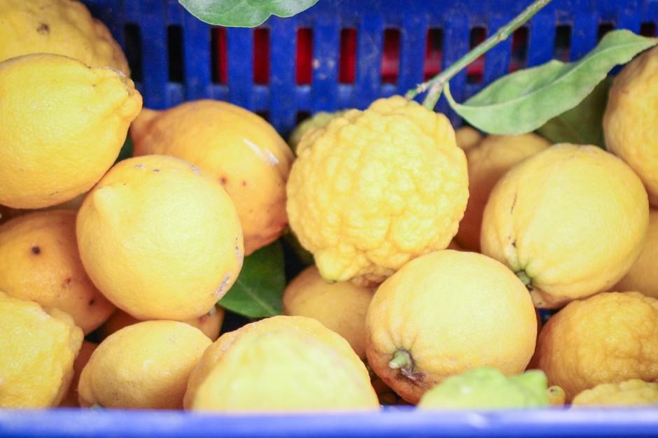 roma farmers market